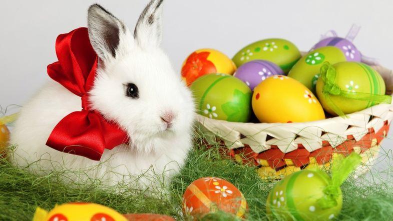 Счастливых пасхальных праздников!